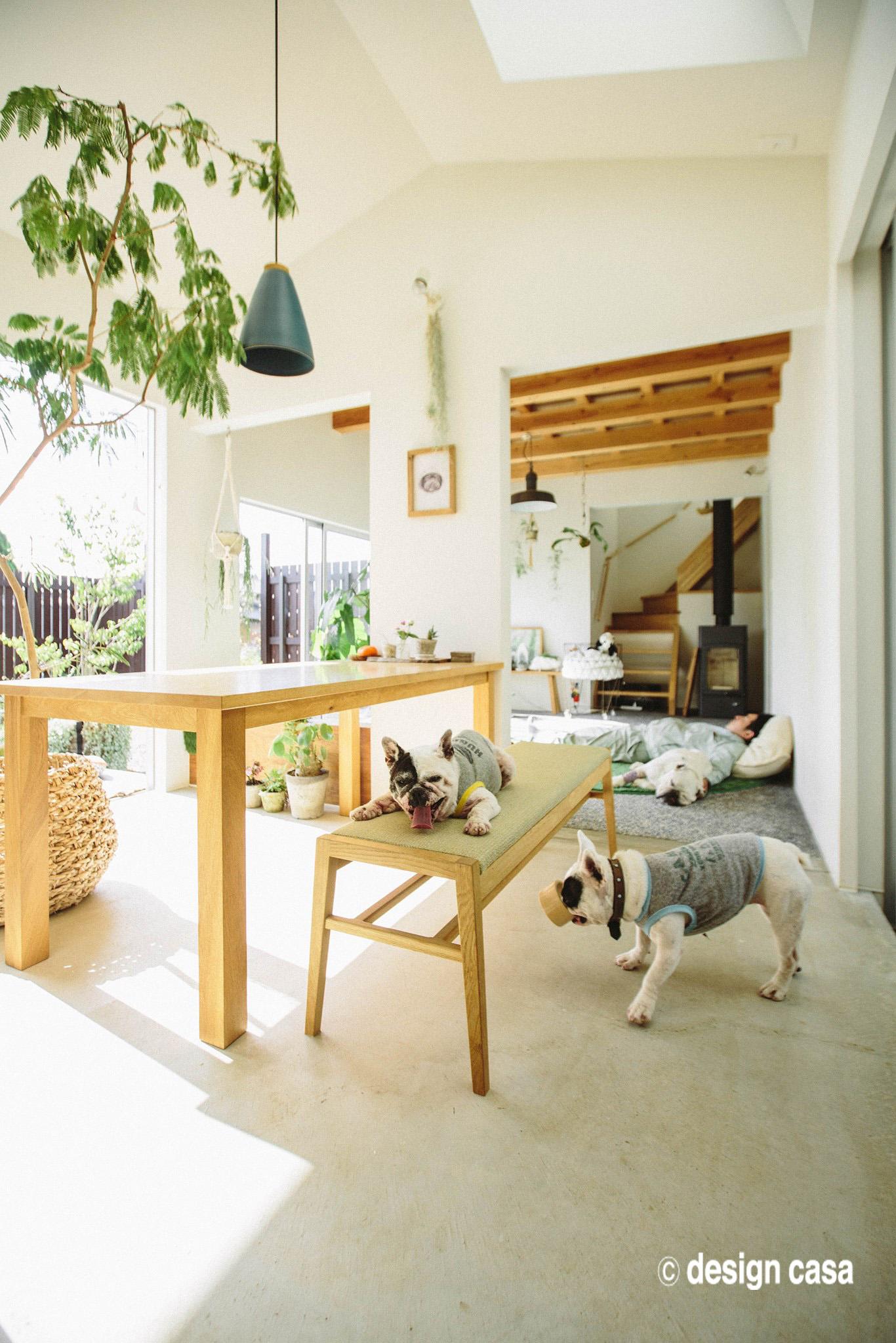 平屋風のガレージハウスの内観、ペットと暮らしを愉しめる間取り
